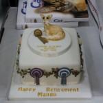 Mango's cake